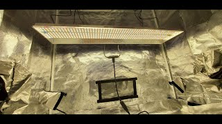 Mars Hydro TSL-2000 Grow Light | Test and Overview