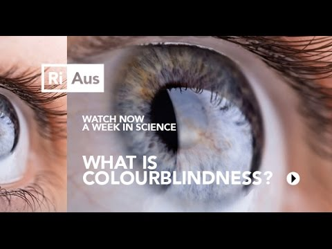 What is Colour Blindness? - A Week in Science