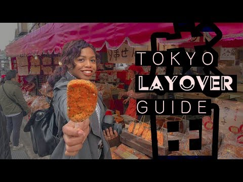FIRST 6 HOURS IN JAPAN | Narita and Tokyo travel tips