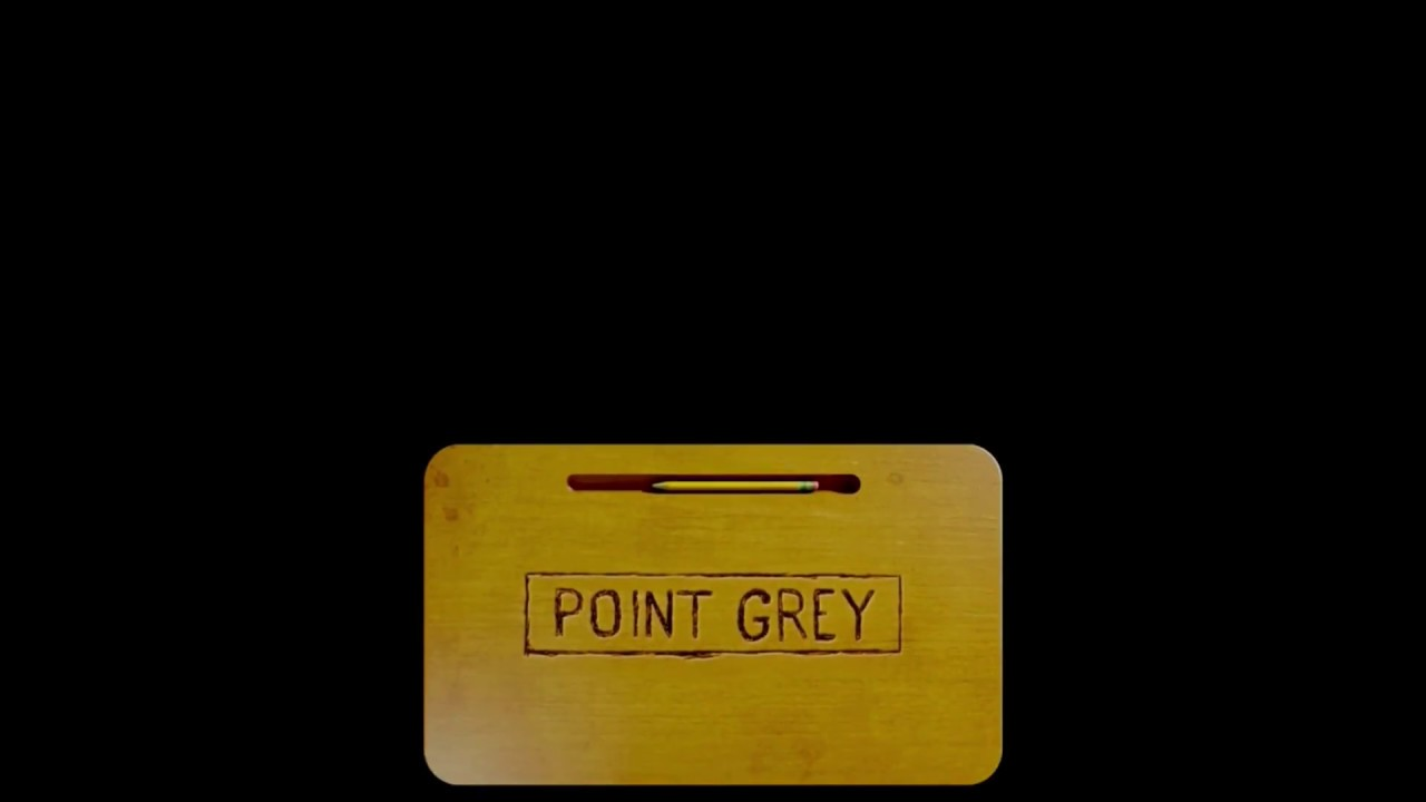 Point Grey/Annapurna Pictures/Sony/Columbia Pictures/Sony Pictures Television (2016)
