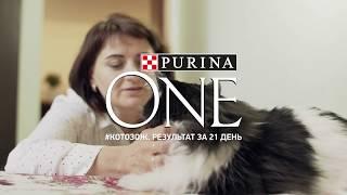 «Видимый результат за 21 день» с PURINA ONE®: Людмила и Феля (короткая версия)