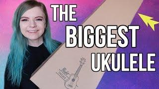 unboxing my first baritone ukulele! *the biggest one yet*