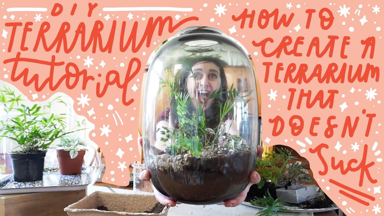 Diy Terrarium Tutorial How To Create A Terrarium That Doesn T Suck