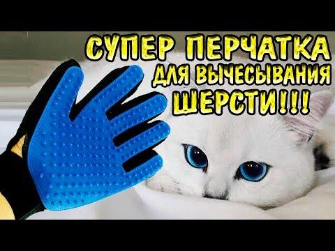 Перчатка для шерсти кошек и собак - Товары для животных с Aliexpress -  !!!