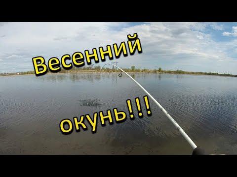 Весенний окунь. Рыбалка в Иркутской области