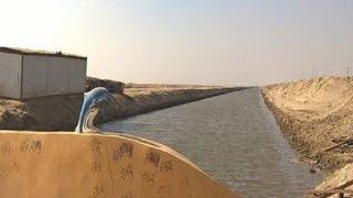 دينا يحيى: الانتهاء من حفر 1000 حوض من مشروع الاستزراع السمكي