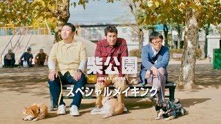 渋川清彦主演ドラマ『柴公園』メイキング映像が解禁。柴犬連れおっさん3...