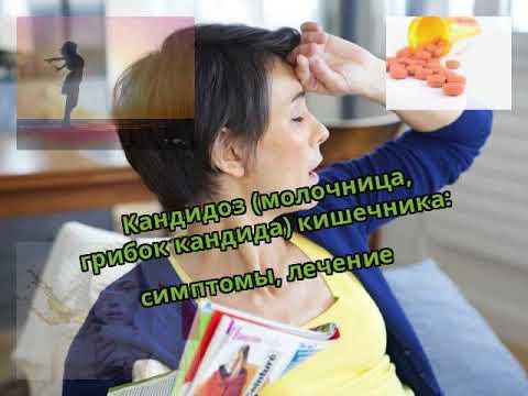 Кандидоз (молочница, грибок кандида) кишечника: симптомы, лечение