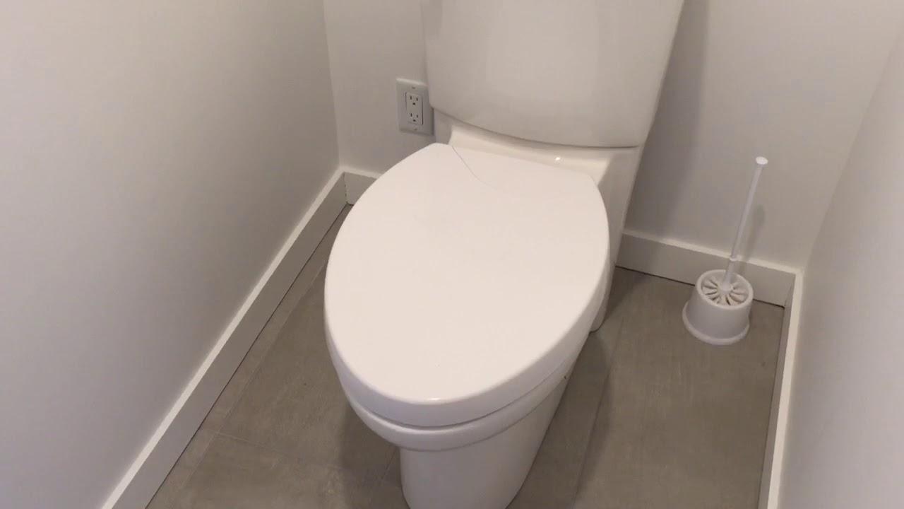 Change An American Standard Toilet Seat Youtube