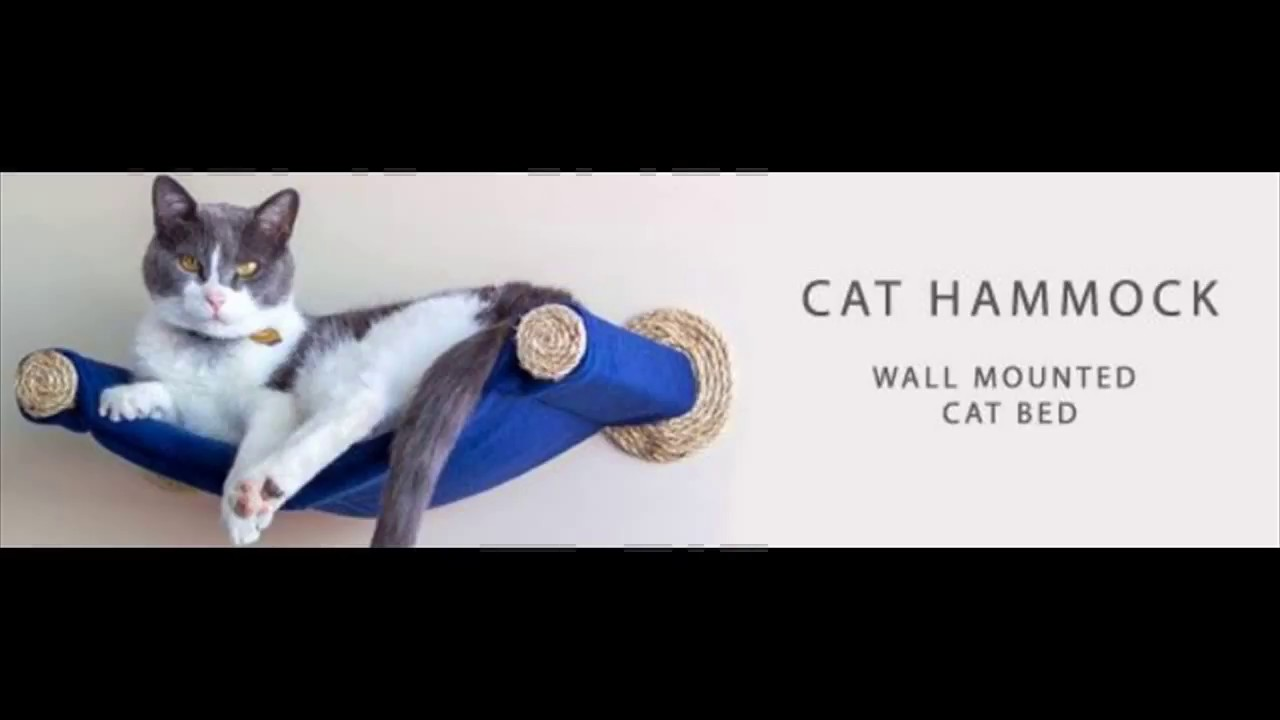 Cat Hammock Wall Mounted Cat Bed Youtube