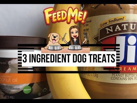 Easy 3 Ingredient DIY Dog Treats 🐶