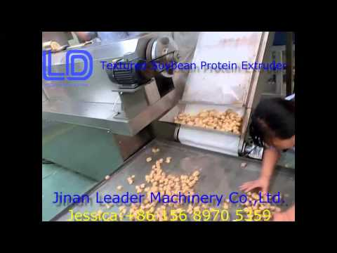 Textured Soybean Protein Extruder,artificial meat process line Video
