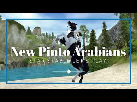 New Pinto Arabians Aktualizace 3 The Kaisie Youtube
