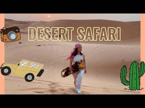 A Day in the Desert   Desert Safari Adventure #abudhabi