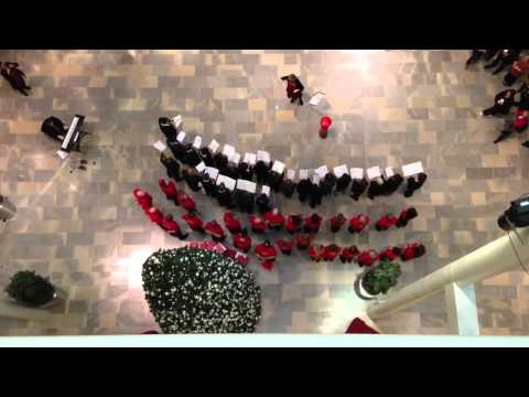 Christmas comes to Unilever House