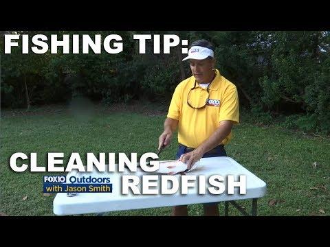 Fishing Tip: Cleaning Redfish
