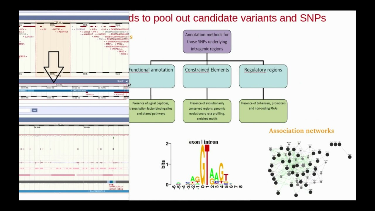 Prioritizing Snps And Variants €� Video Abstract [123604]
