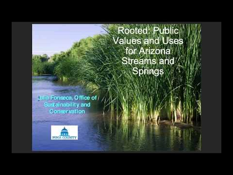 Rooted: public values and uses for Arizona streams and springs