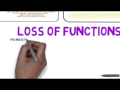 functions of family  functionalist