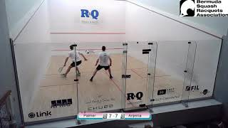 David Palmer vs Laurens Jan Anjema - Finals