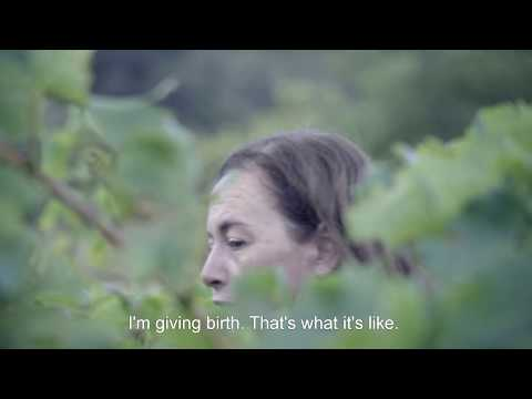 wine article Wine Calling  Le Vin se lve 2018  Trailer English Subs