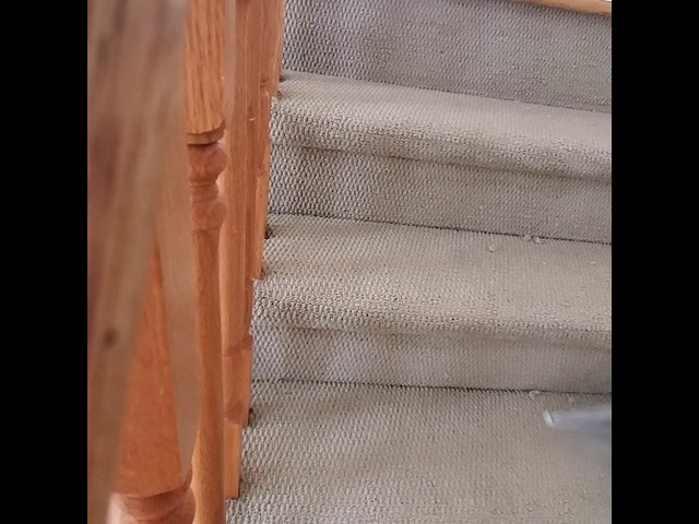 How to clean heavily soiled carpets on stairs