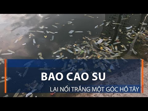 Bao Cao Su Lại Nổi Trắng Một Góc Hồ Tây | VTC1