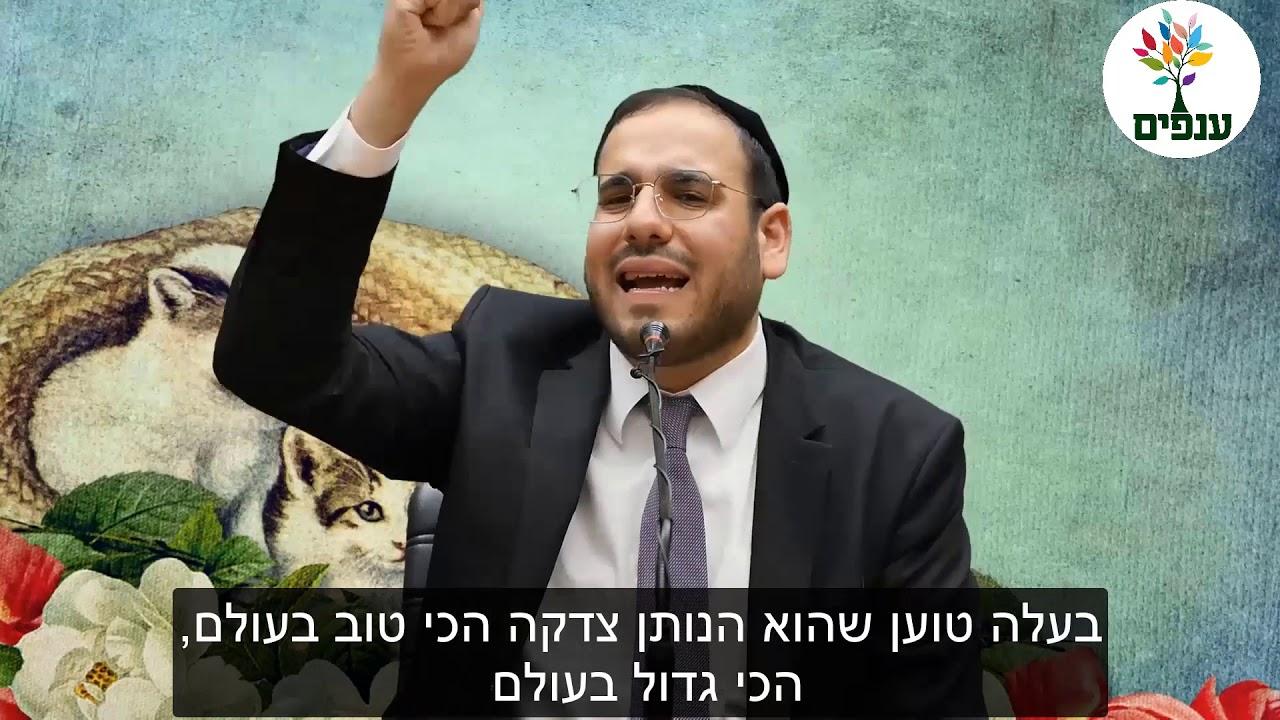 הרב דוד פריוף: אם אשתך הולכת לישון בוכה - אתה ממש לא צדיק, גם אם אתה נראה ככה