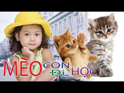 Bé Bảo An - Mèo Con Đi Học ( Nhạc sĩ : Nguyễn Tiến Nghĩa )