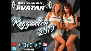 2019 Reggaeton Avatar