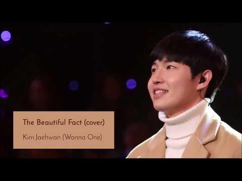 Kim Jaehwan 김재환 (Wanna One 워너원) - The Beautiful Fact 아름다운 사실 (Cover) | God's Voice 신의 목소리