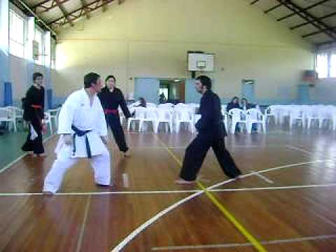 KARATE VS kUNG FUAVI - YouTube