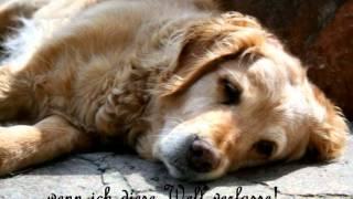 Abschied nehmen- Ein Hund erzählt vom Tod