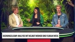 Dschungelcamp-Analyse mit Helmut Werner und Florian Wess