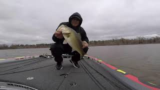 FLW Pro Circuit Sam Rayburn Review