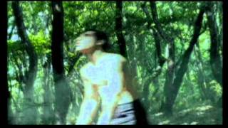 Vasilis Saleas - The Will Of The Wind - FM RECORDS