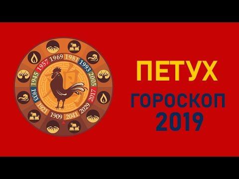 Петух в год Свиньи. Восточный гороскоп на 2019 год