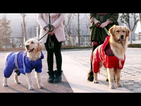 Видео Купить одежда для собак hurtta