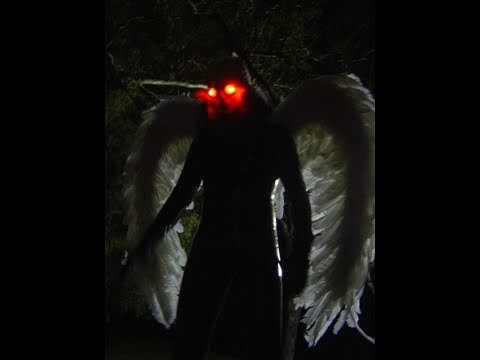 Mothman, Aliens and other Winged Creatures