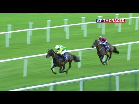 Racing from Punchestown |16th October 2018