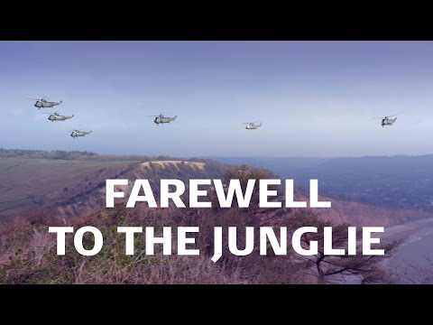 Sea King Mk4 Retirement Flypast