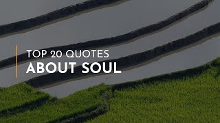 TOP 20 Quotes about Soul ~ Everyday Quotes ~ Funny Quotes ~ Family Quotes