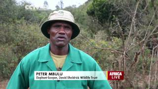 Eco Africa: Caring For Kenya