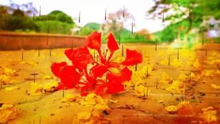 Tháng Sáu mùa thi - Khắc Dũng