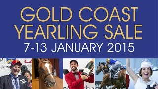 2015 Magic Millions Gold Coast Open House Racing Panel Thumbnail