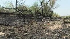 Body found near West Odessa