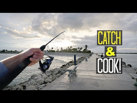 Saltwater Jetty Fishing - CATCH AND COOK!! (Unexpected!)