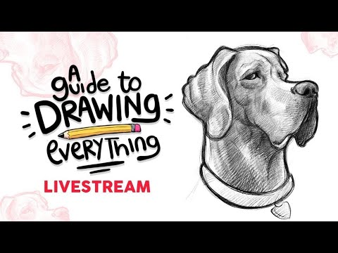 A Guide to Drawing Everything - A live workshop (2nd Edition)