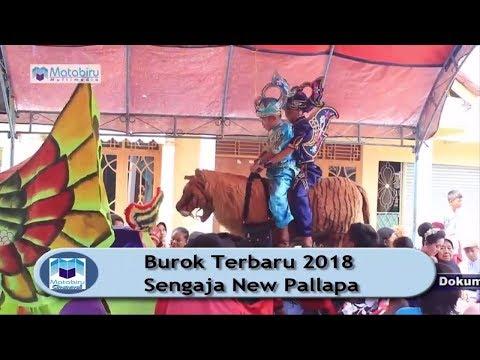 Sengaja New Pallapa - Burok Terbaru 2018