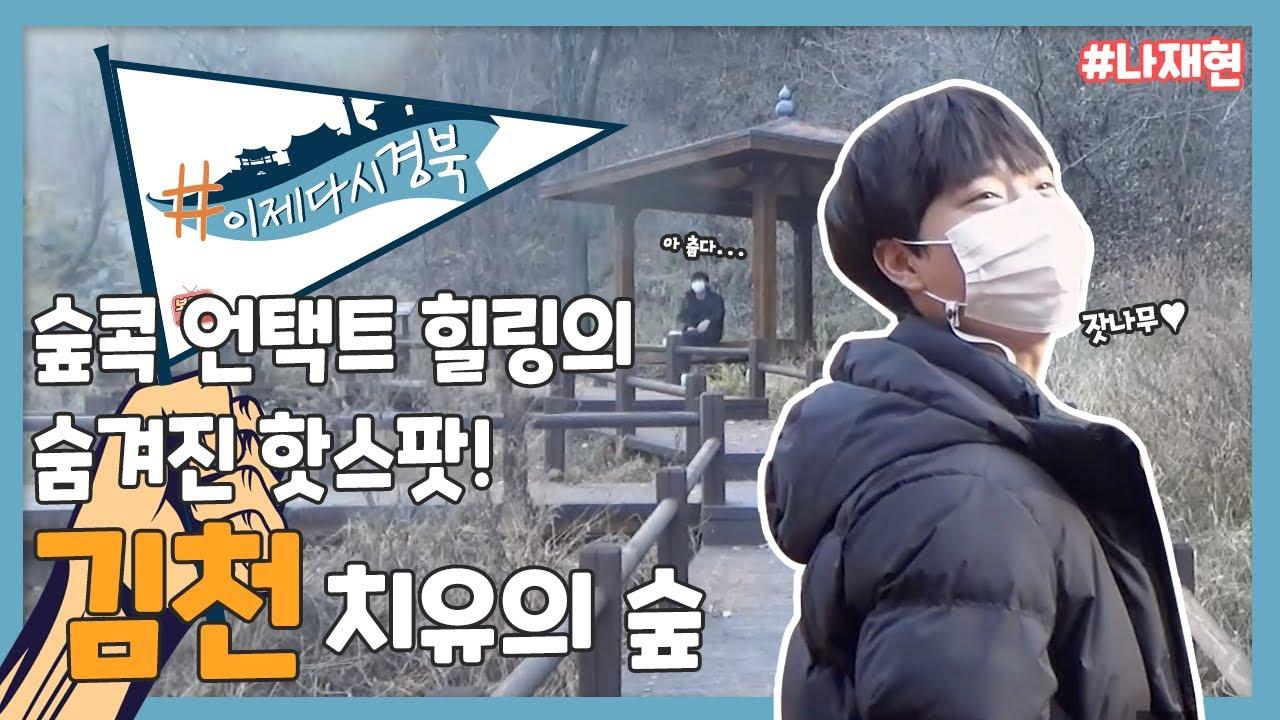 #나재현 숲속에 콕 박혀 힐링을! 김천 치유의 숲을 가다!